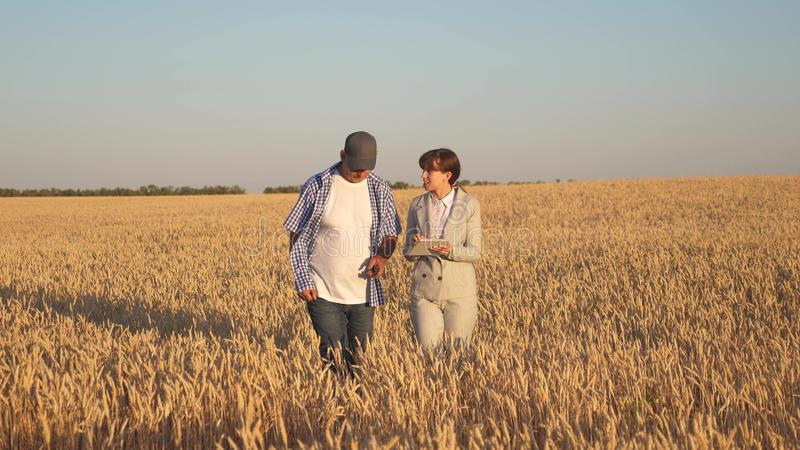 Farmer sells wheat grain to a business woman. business woman with tablet and farmer teamwork in a wheat field. Business. Farmer sells wheat grain to business stock photo