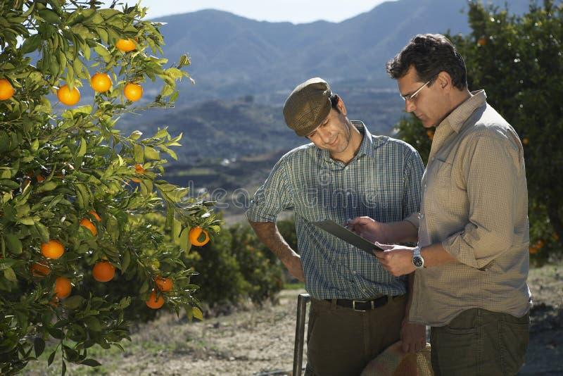 Farmer And Supervisor Analyzing Checklist In Farm stock photo