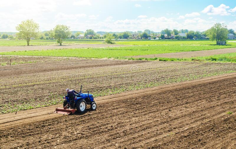 A farmer on a tractor cultivates a farm field. Field preparation for new crop planting. Cultivation equipment. Grinding and royalty free stock images