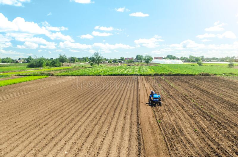 Farmer on tractor loosens and grinds the soil. Preparing the land for a new crop planting. Loosening the surface, cultivating the royalty free stock image