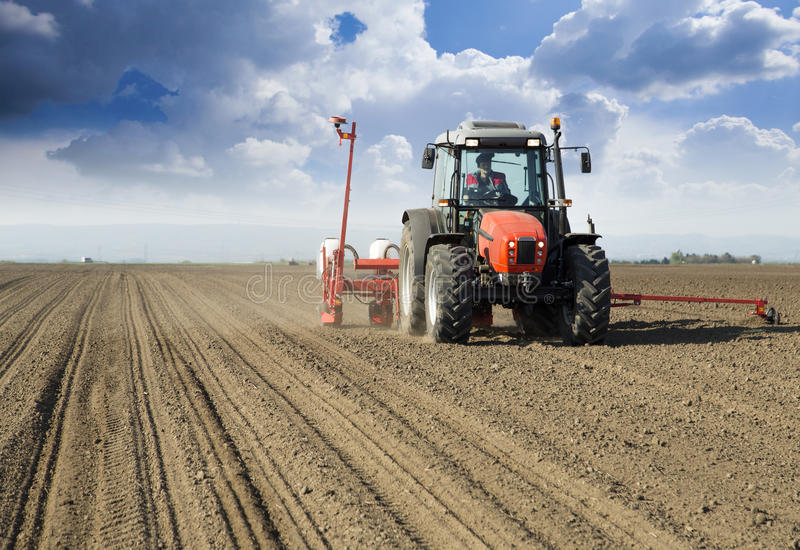 Farmer in tractor sowing crops. At field with seed scattering agricultural machine royalty free stock photography