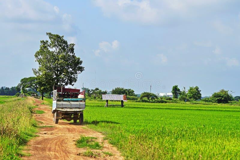 Farmer Transport. Of Rural Farmers in Thailand stock photos