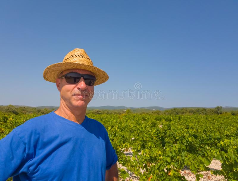 A winegrower stands in a field among vineyards stock photos