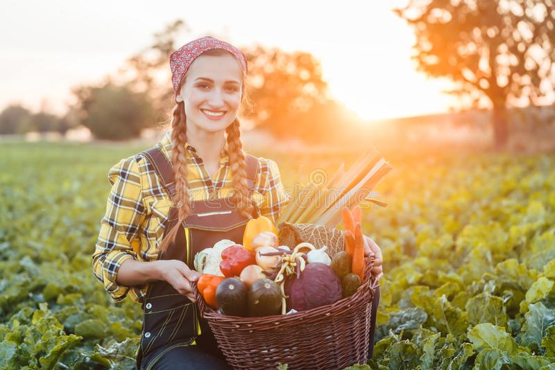 Farmer woman in the country going to market with vegetable basket royalty free stock images