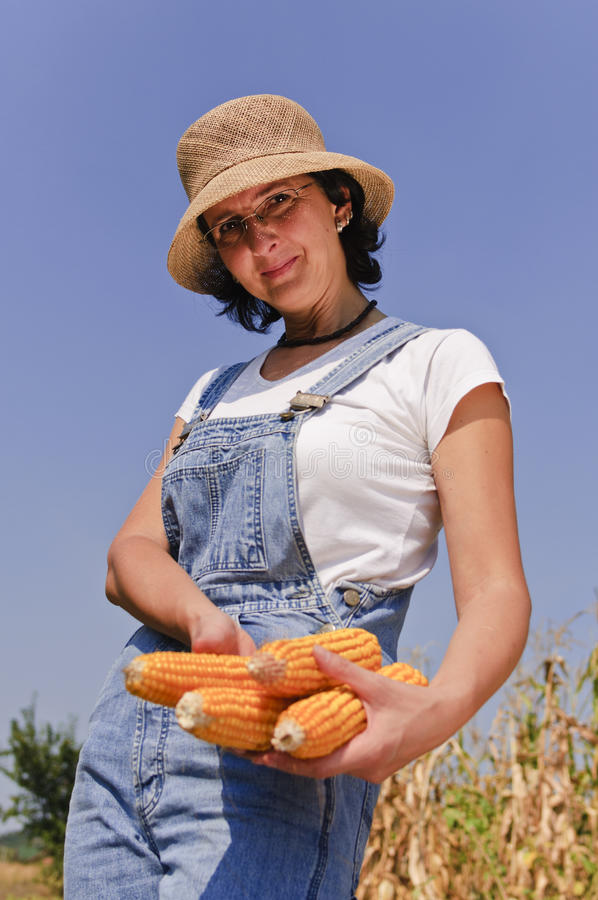 Download Farmer woman with maize stock image. Image of happy, person - 16067649