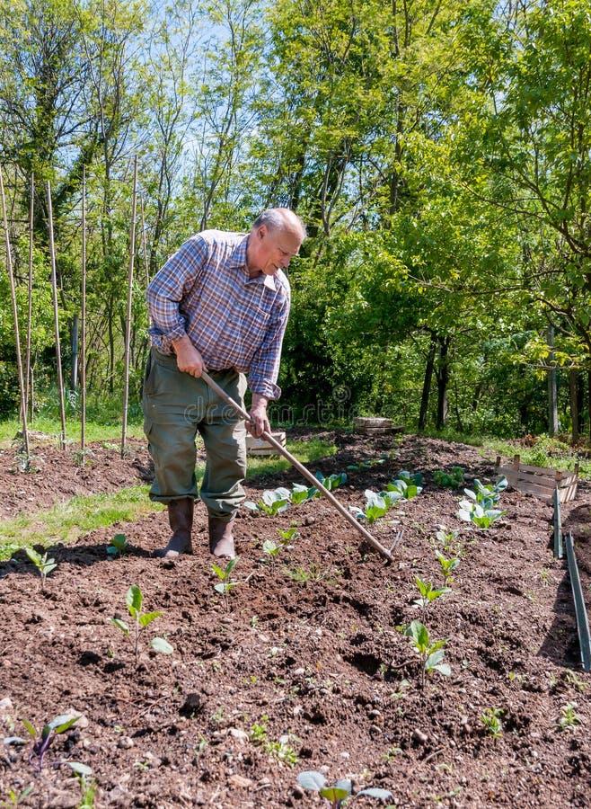 Free Farmer Working In The Garden Stock Photos - 58329323
