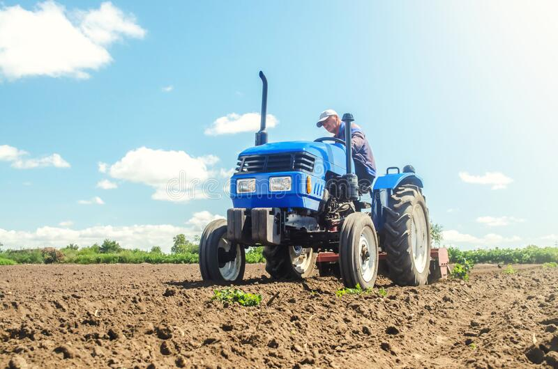 The farmer works on a tractor. Loosening the surface, cultivating the land for further planting. Cultivation technology equipment royalty free stock photo