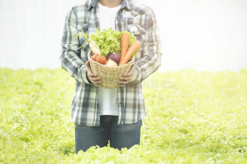 Farmers asian man hands with freshly harvested vegetables in basket,Concept of biological, bio products, bio ecology, grown by. Yourself,Small business stock photos