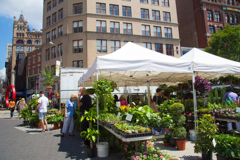 Farmers Greenmarket NYC. NEW YORK CITY - AUG 2: Union Square Greenmarket produce and plant sale in Manhattan on Aug 2, 2013. This world famous farmers' market stock photo