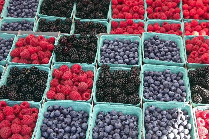 Download Farmers' Market Berries stock photo. Image of blue, cartons - 8261906