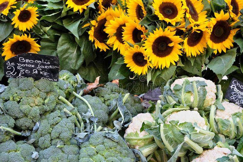 Farmers market in France vegetables and sunflowers. stock photography
