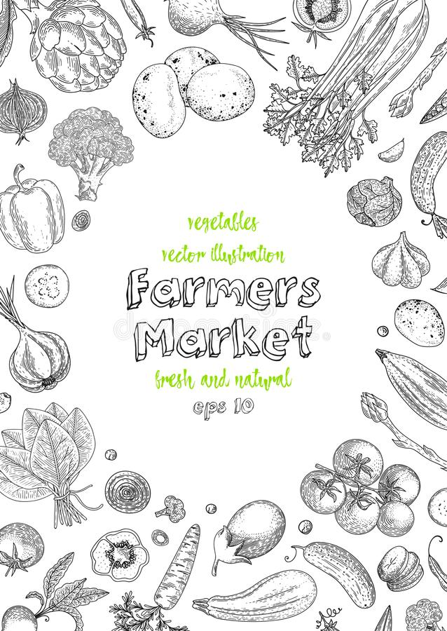 Farmers market menu design template. Vegetarian vintage background with natural organic products. Organic detailed. Vegetables food poster. Engraved style royalty free illustration