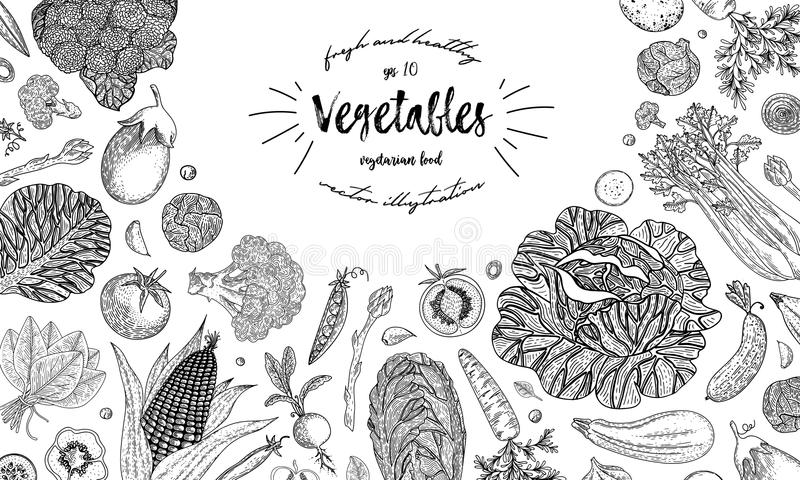 Farmers market menu design template. Vintage hand drawn sketch vector illustration. Linear graphic. Engraved style. Can royalty free illustration