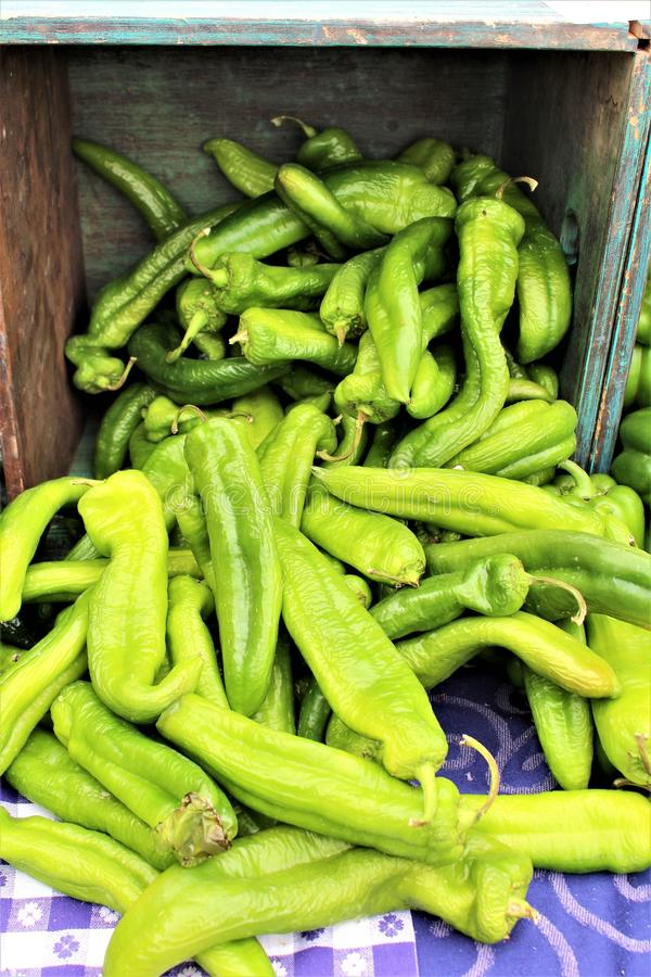 Farmers Market at Old Downtown Scottsdale, Arizona, United States. Green chilies at the Farmers Market at Old Downtown Scottsdale, Arizona, United States royalty free stock photography
