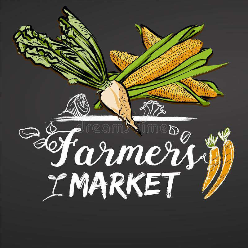 Farmers Market Sketched Banner on Chalkboard. Hand drawn food doodles and colored vegetables. Ready for printing, e.g. Flyers, menu cards as well as online vector illustration