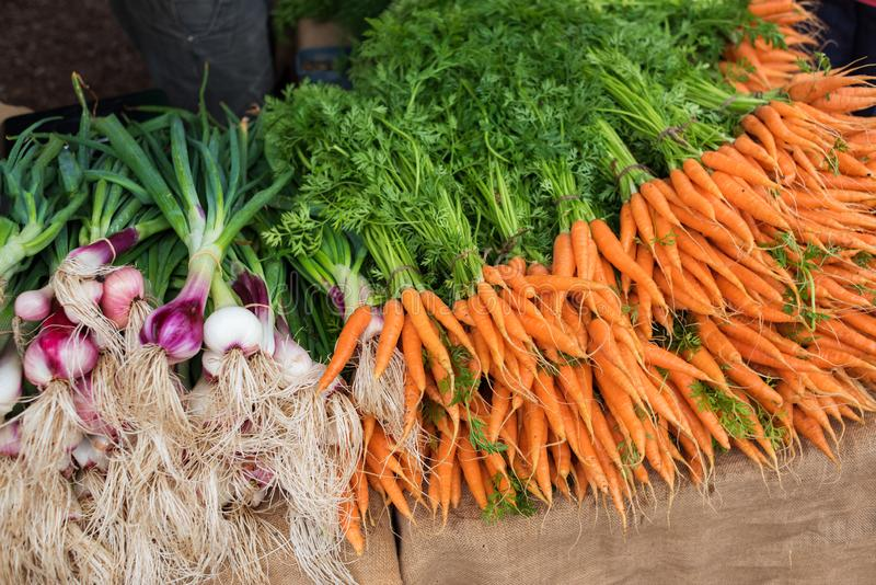 Farmers market stall with bright orange carrots and spring onions royalty free stock photo
