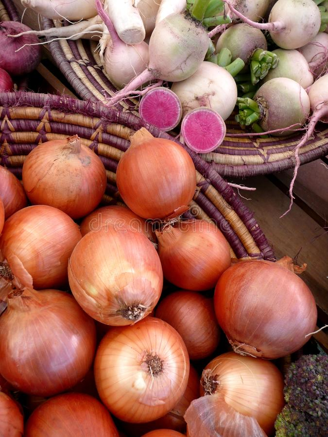 Farmers Market vegetables: onions and turnips royalty free stock photos