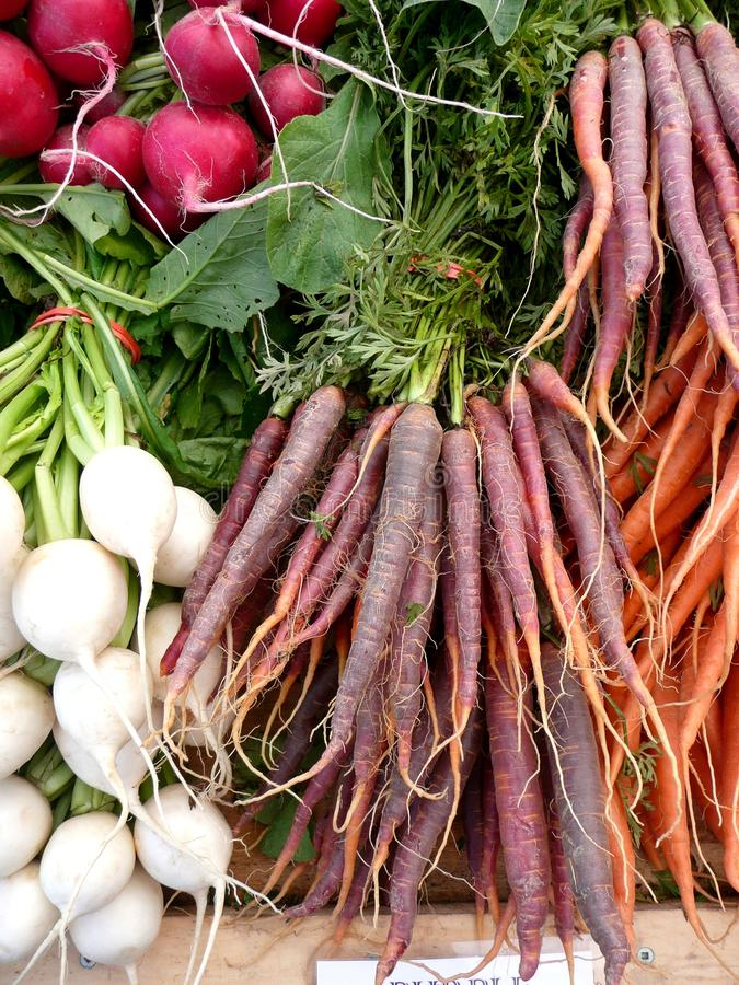 Free Farmers Market Vegetables: Purple Carrots Royalty Free Stock Photography - 16311907