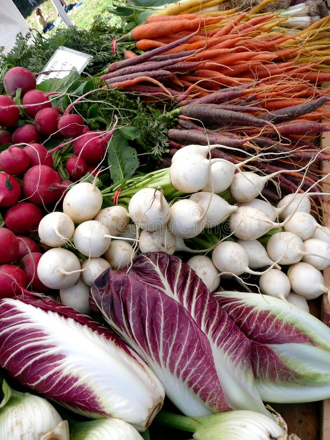 Farmers Market vegetables: radicchio and turnips royalty free stock image
