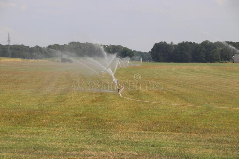 Farmers in the Netherlands are watering water over meadows during the dry summer of 2018 stock photography