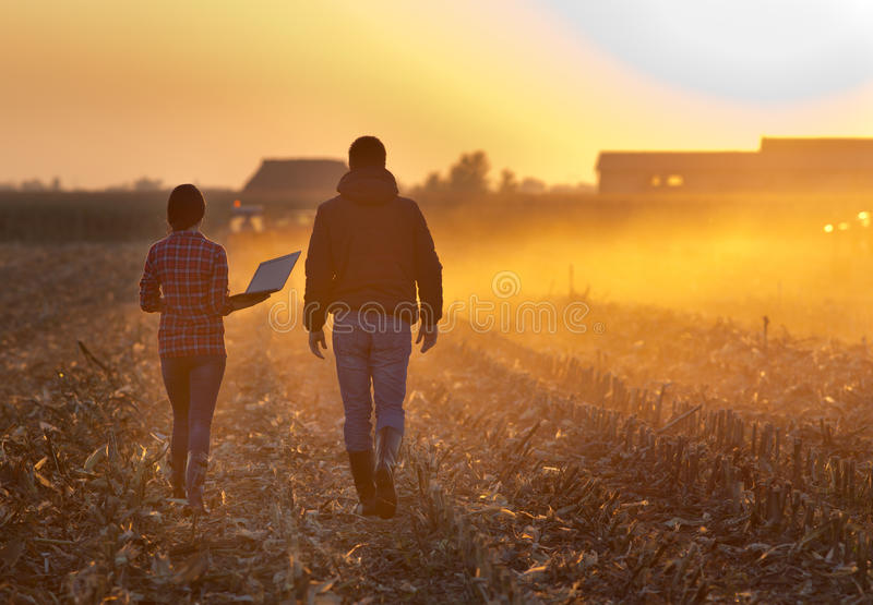 Farmers walking on field during baling royalty free stock image