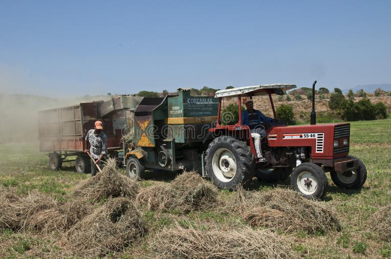 Farmers working in Harvest season and Threshing machine in Aydin, Aegean Turkey royalty free stock images