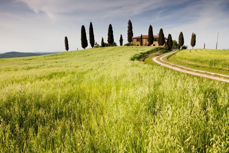farmhouse Ιταλία κοντά στο pienza Τοσκά στοκ εικόνες
