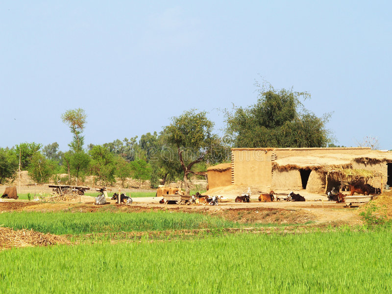 Download Farmhouse stock image. Image of serene, house, farmhouse - 5195893