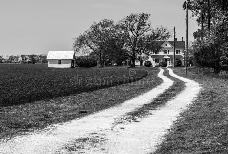 The Farmhouse and track. A farmhouse stands alone at the end of a rutted trackA tree stands alone, solitary in the blue waters of a rippled lake royalty free stock photos