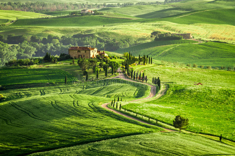 Farmhouse in Tuscany located on a hill. Italy royalty free stock images
