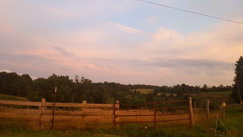 farming stock fotografie