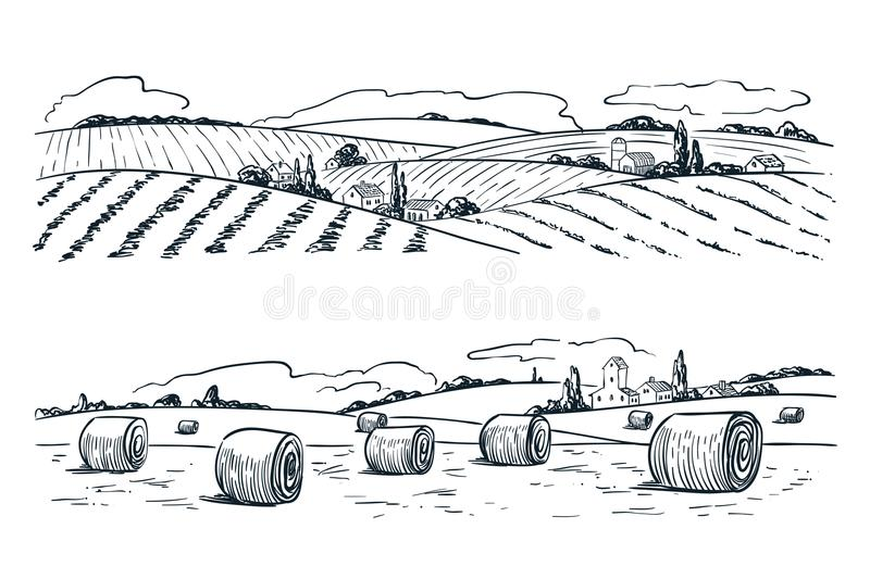 Farming fields landscape, vector sketch illustration. Agriculture and harvesting vintage background. Rural nature view stock illustration