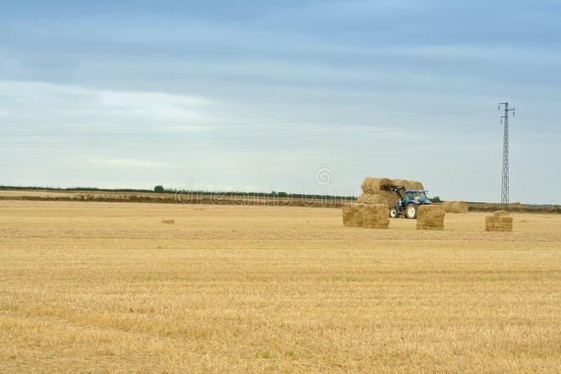 Farming Ireland stock image