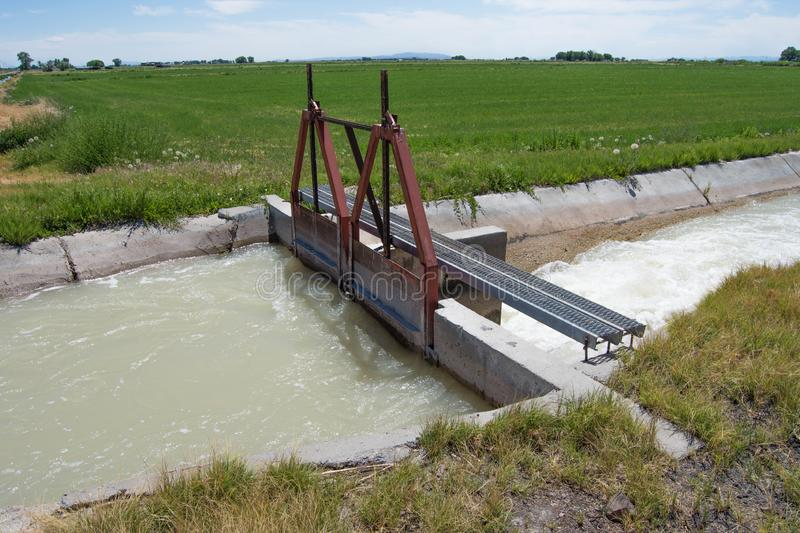 Farming irrigation ditch head gate. Water flooding field agricultural agriculture double gates farmland plants hay alfalfa flow cement inefficient waste royalty free stock images