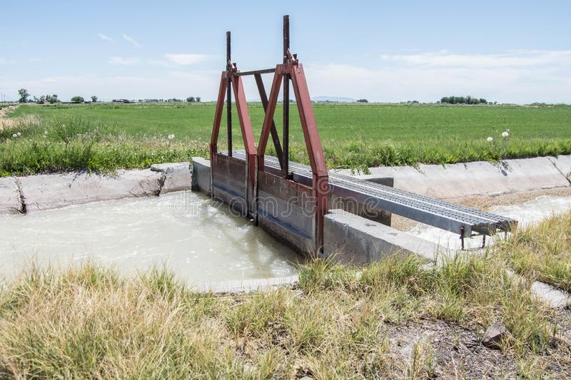 Farming irrigation ditch head gate. Water flooding field agricultural agriculture double gates farmland plants hay alfalfa flow cement inefficient waste royalty free stock photo