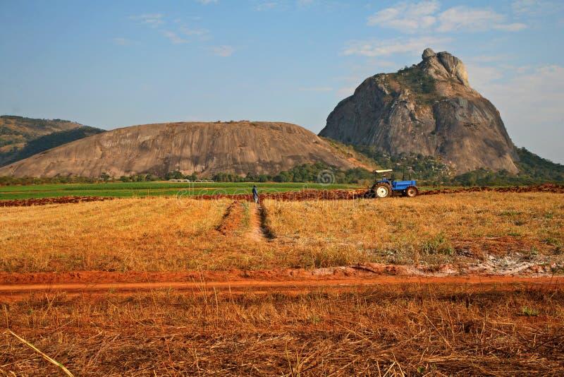 Farming operations stock photos