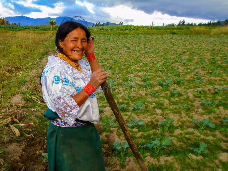 Farming in Otavalo, Ecuador. Unidentified woman working on a field in Otavalo, Ecuador. Otavalo was an area made up principally of farming communities due to the stock photos