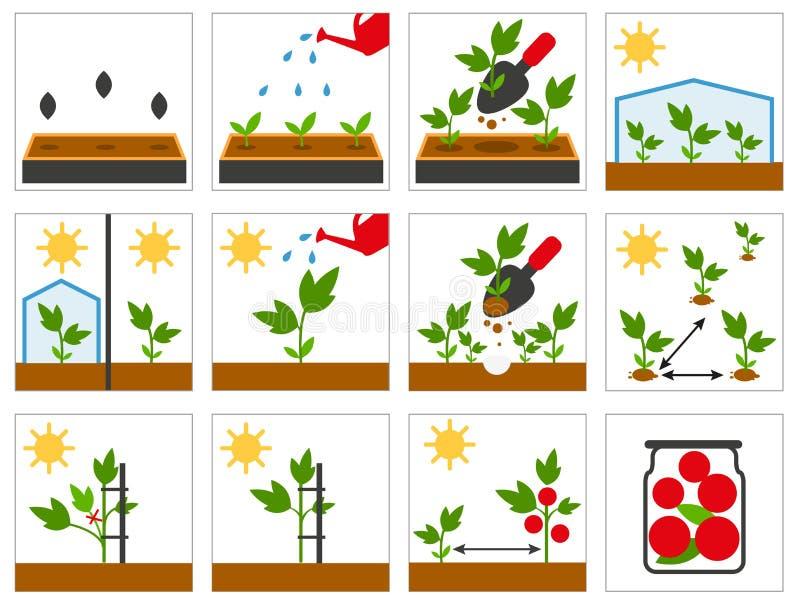 Farming seedling. Agricultural engineering vector illustration