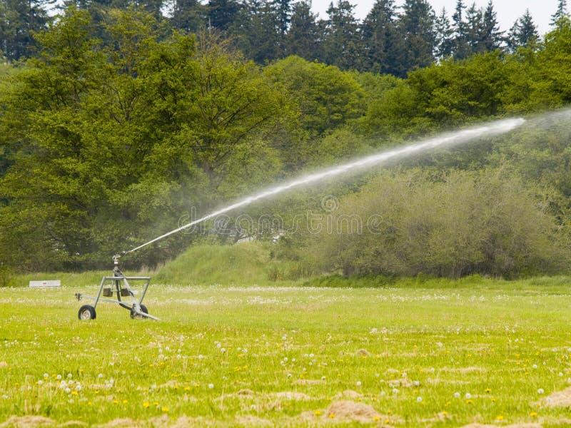 Farming Sprinkler royalty free stock images