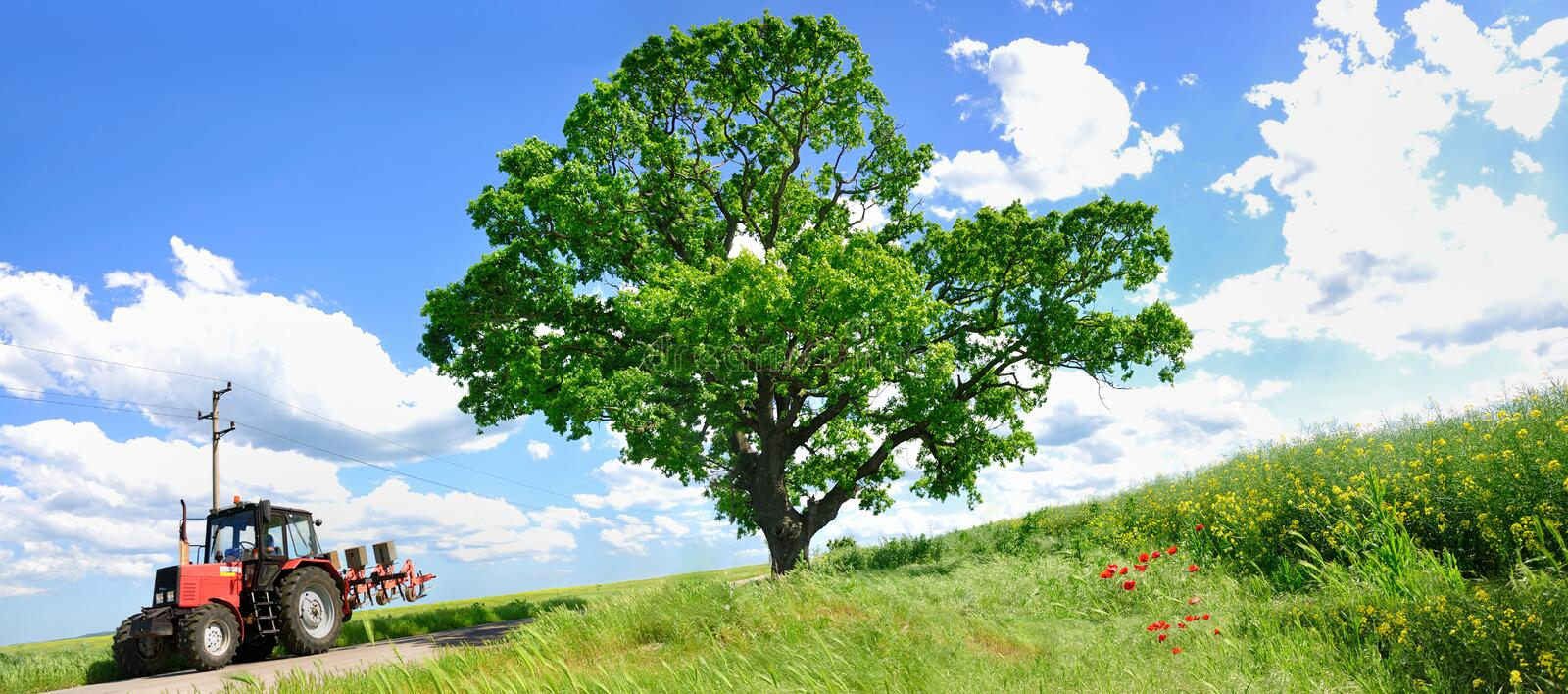 Download Farming Tractor And Big Green Tree Stock Photo - Image: 15257206