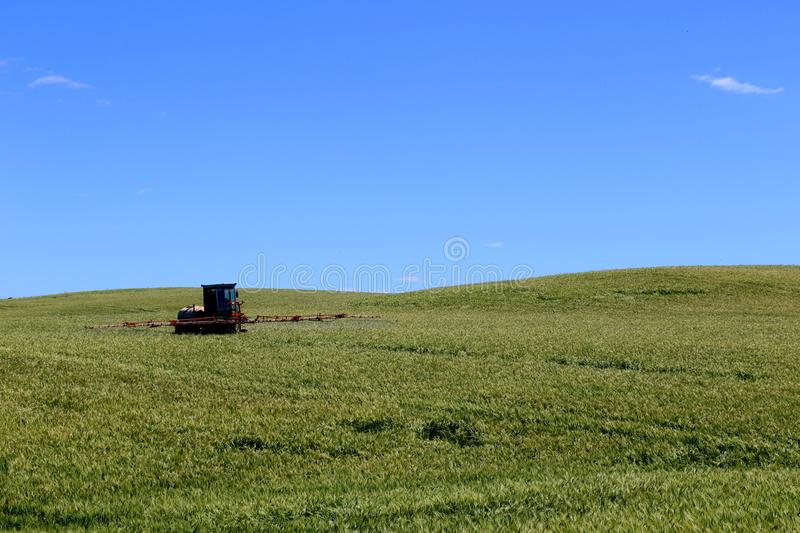 Farming tractor plowing and spraying on wheat field. royalty free stock photography