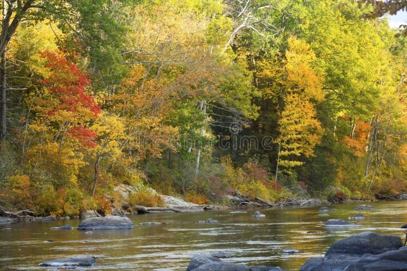 Farmington-Fluss fließt durch vibrierenden Herbstlaub in Bezirk, Connec lizenzfreie stockfotos