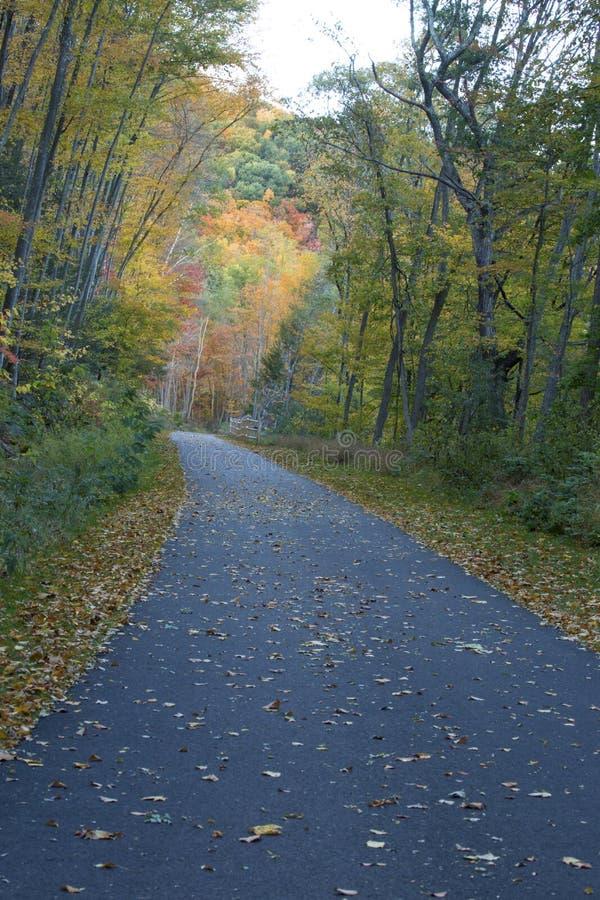 Farmington-Fluss-Spur mit Herbstlaub im Bezirk, Connecticut lizenzfreie stockfotos