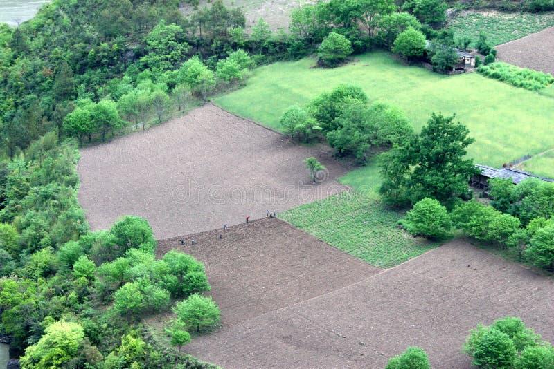 Download Farmland stock photo. Image of cropland, trees, natural - 2321998