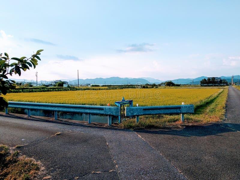 A Farmland Around The Corner stock photography