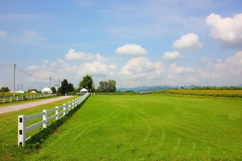 Farmland with blue  sky  white cloud  mountain beautiful view. Nature background royalty free stock photography