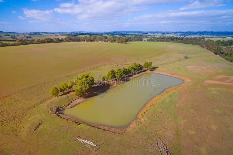 Farmland with dam in Australia. Dam in rural farmland in South Gippsland, Australia stock images