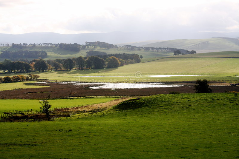 Download Farmland In Dumfries And Galloway Stock Photo - Image: 6815246