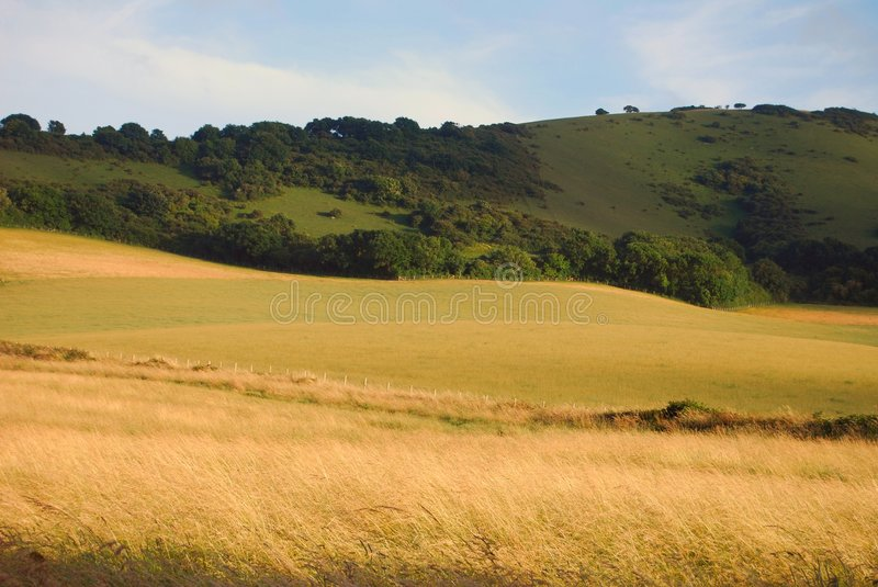 Farmland in East Sussex, England royalty free stock photos