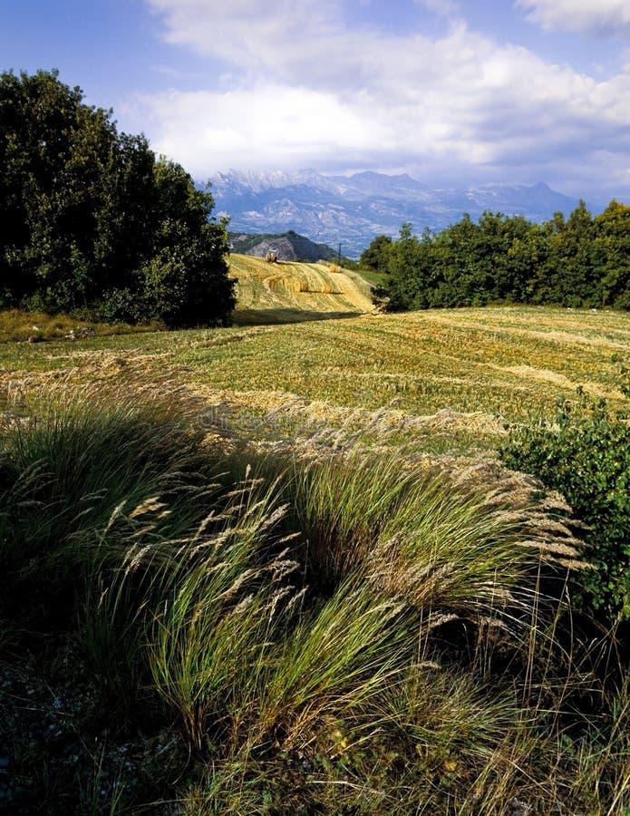Farmland french alps royalty free stock photo